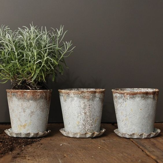 Individual Planting Pots (set of 2)