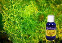 Aniseed Essential Oil 15mL