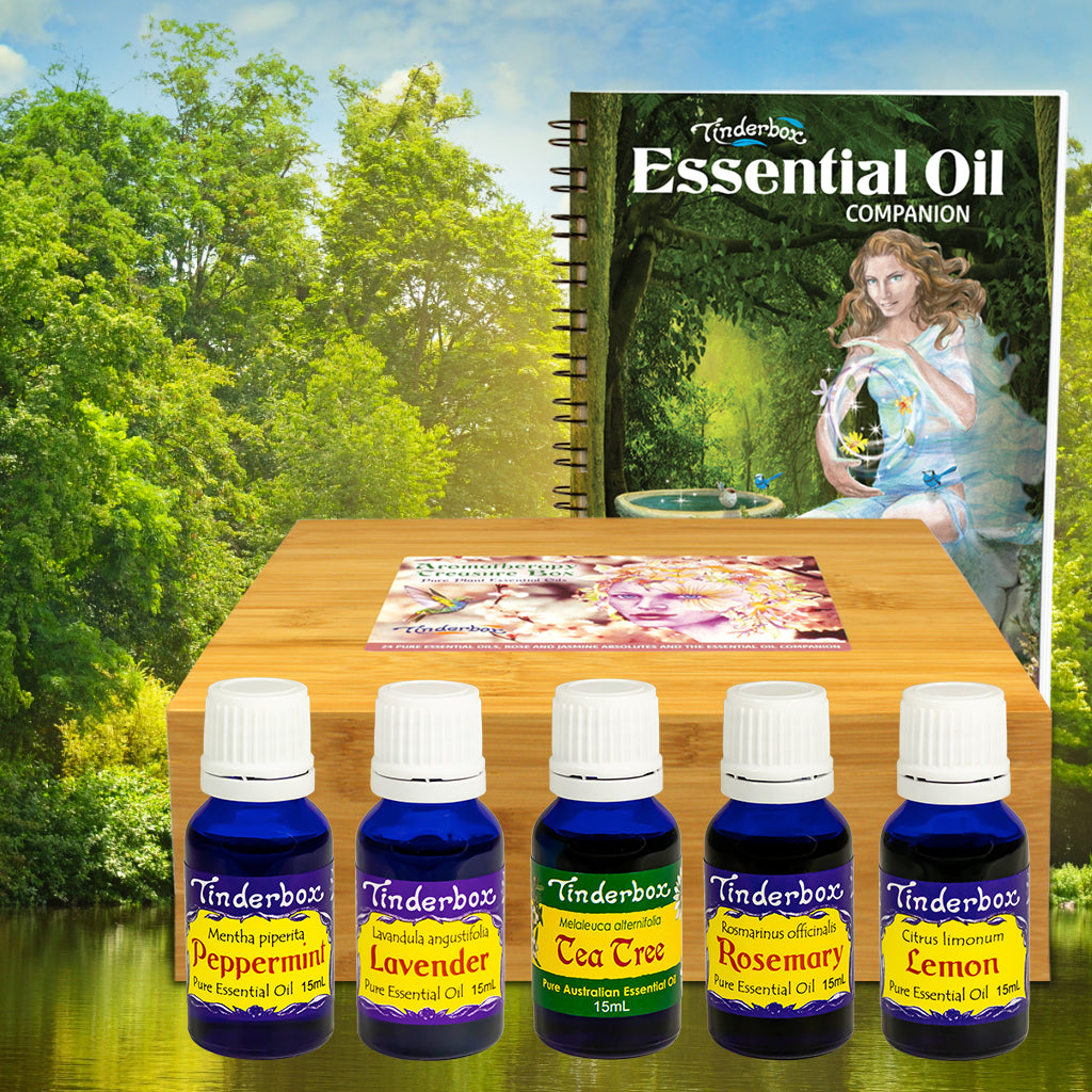 Aroma Builder - Aromatherapy Treasure Box