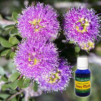 Honey Myrtle Essential Oil 15mL