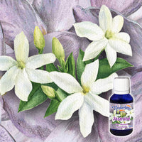 Jasmine Absolute 5% 15mL
