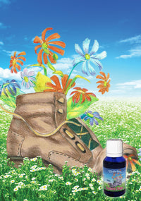 Scented Soles Blend 15mL