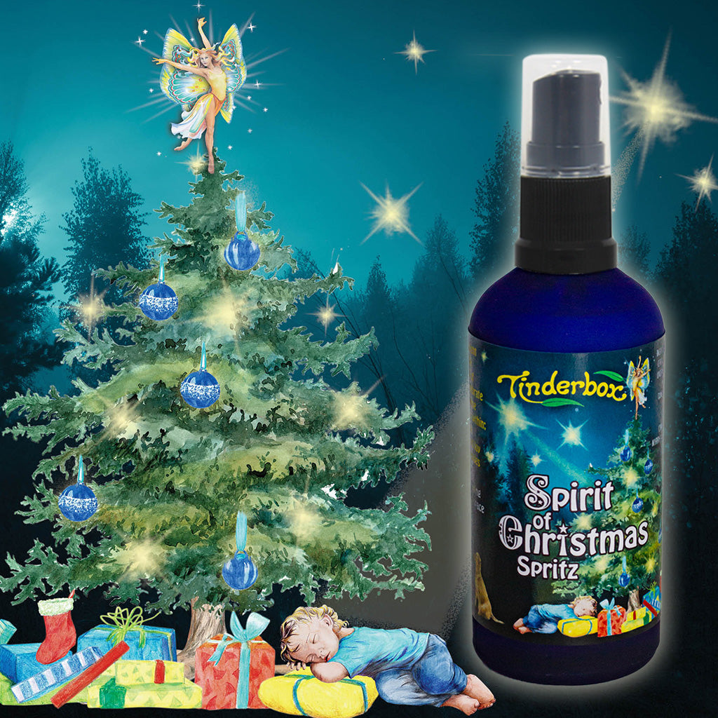 Spirit of Christmas Spritz 100mL