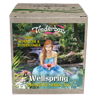 Wellspring Protective Herbal Tea 75g