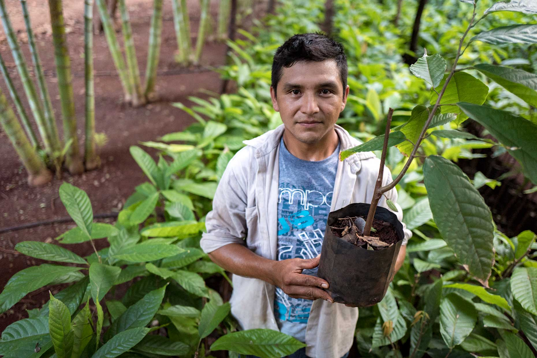 Mayan Cacao Plantation Worker | Stories + Objects Travel Magazine