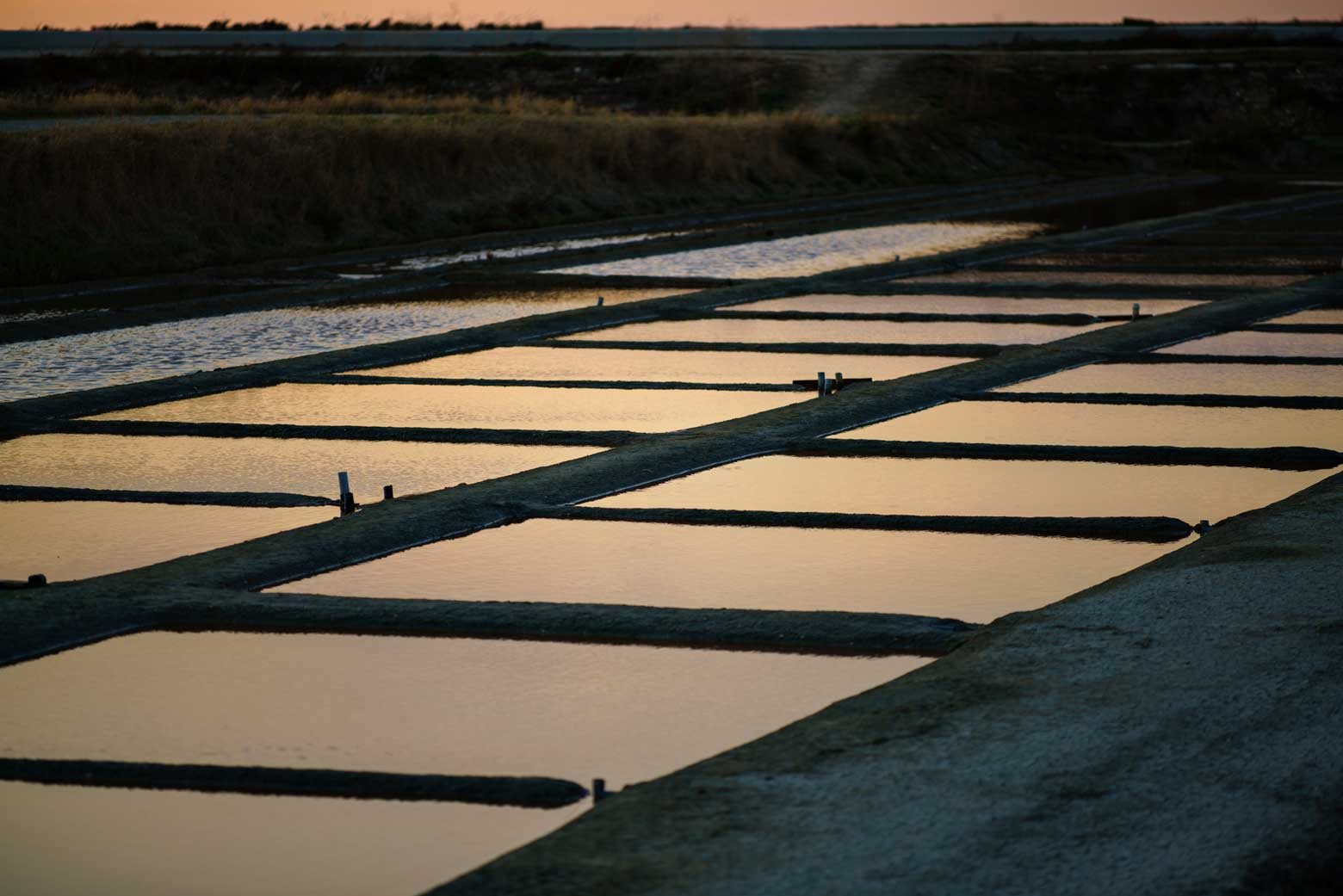 Salt Marshes At Dusk In Il De Re, France | Stories + Objects Travel Magazine