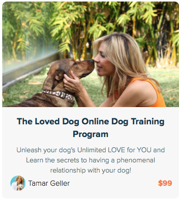 The Loved Dog Online Training Program