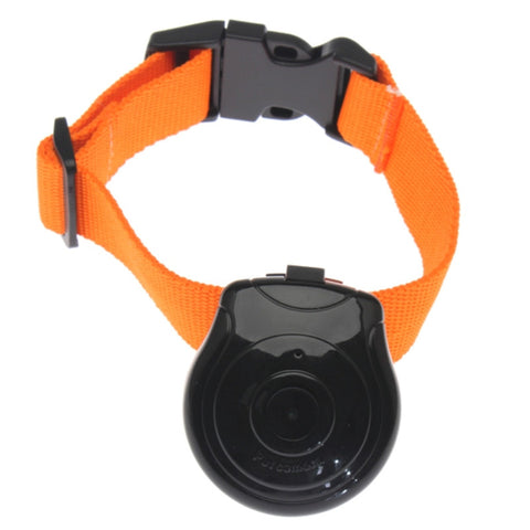 Pet Collar Digital USB Camera/Video Recorder