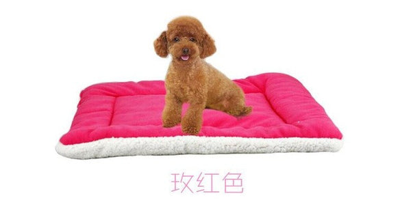 Dog & Cat Cushioned Bed