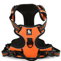 Front Range 3M Reflective No-Pull Dog Harness