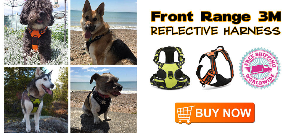 Front Range 3M Reflective Harness - Barkforce