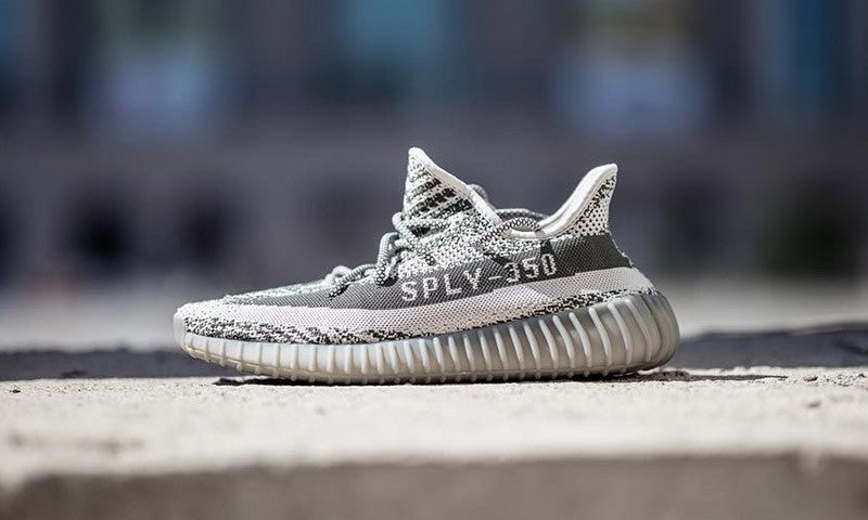 Yeezy 350 turtle dove Clothing for Sale