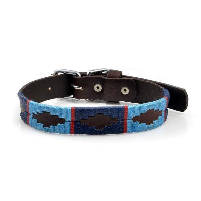 Dog Collar - Falcon