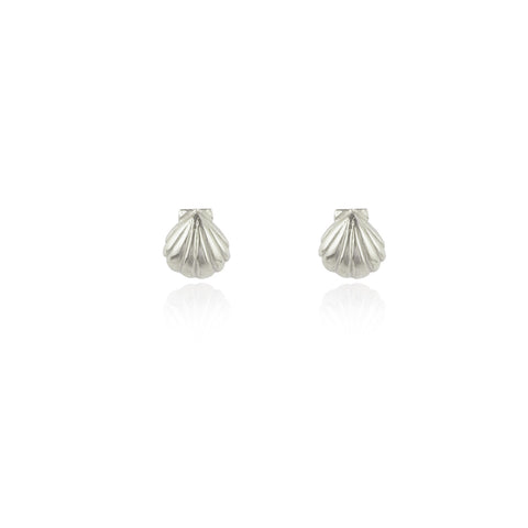 Shell Stud Earrings Silver