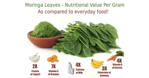 Moringa for Malnutrition