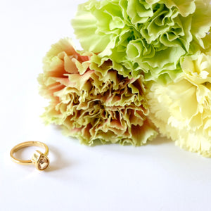 VERA Generosity Ring in Citrine