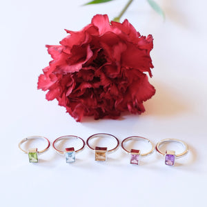 VERA Generosity Rings in Silver