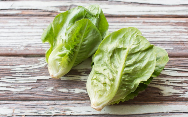 'Little Gem' Lettuce Seeds