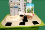 LushGro Beginner's Hydroponic Kit