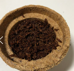 Coir cup & coir Pallet Germination set