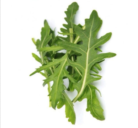 Arugula (Eruca sativa Mill.) Seeds (350-400 seeds in a pack)