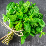 Peppermint (Mentha Piperitta) Heral Heirloom, ~400 Seeds