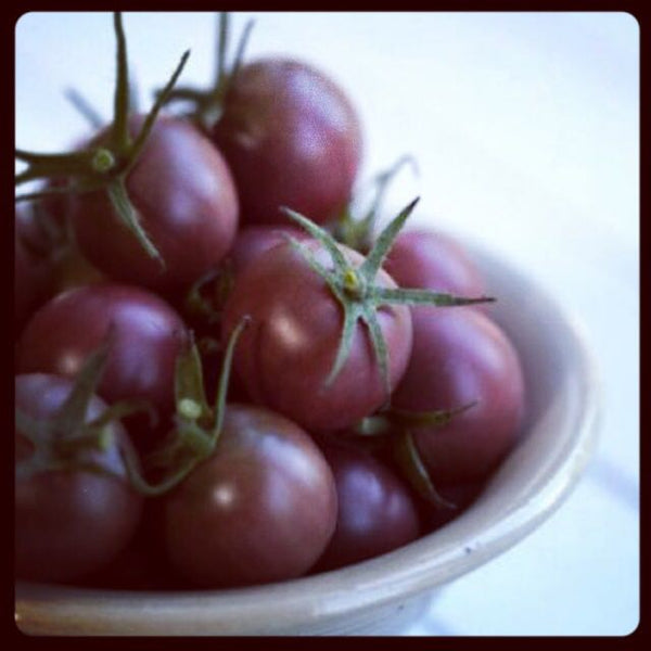 Organic Cherry Tomato 'Black Cherry' (Lycopersicon esculentumm Mill.) Indeterminate Heirloom, 20 Seeds