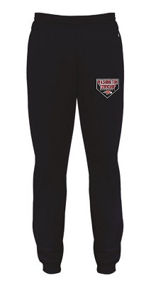 Falcons Baseball Performance Jogger Pants