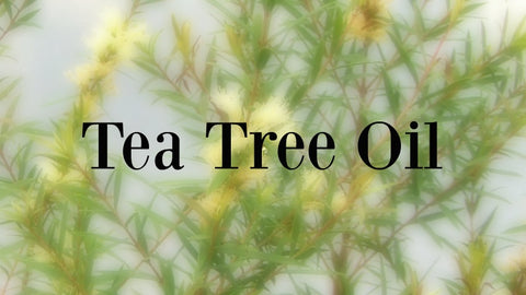 Tea tree oil as Acne treatment