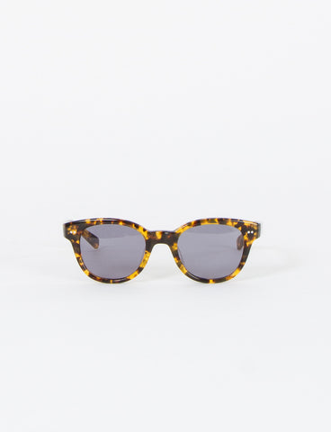 Discovery Sunglasses
