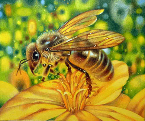 Needlepoint canvas 'Bee'