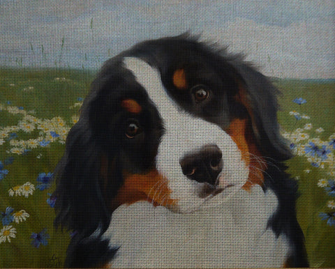 Needlepoint canvas 'Bernese Mountain Puppy'
