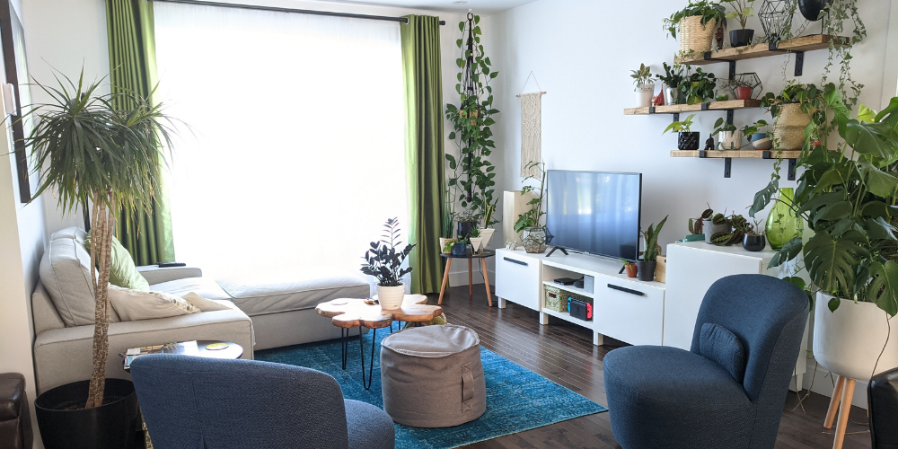 use plants for interior decorating