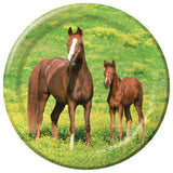 Wild Horses Party Supplies