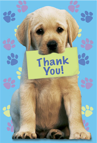 Party Pups Thank You Notes 8ct.