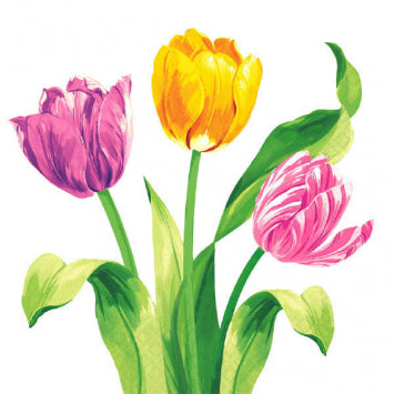 Bright Tulips Luncheon Napkins 16ct.