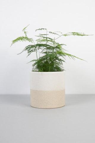 Barbara Flowerpot: Large White & Sand