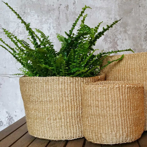 Single Colour Sisal Basket: M
