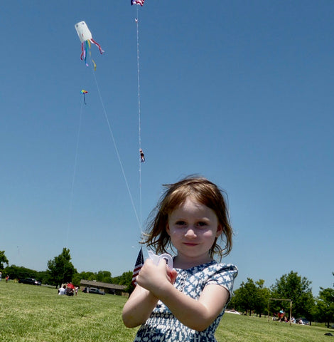 Let There Be Lights And Kites Again >> Kites In The Sky Blog Kites In The Sky
