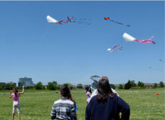 Spring is in the air and so are kites! April is National Kite Month!