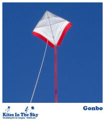 Gonbo DIY Kite Kit (10 pk) - Kites In The Sky
