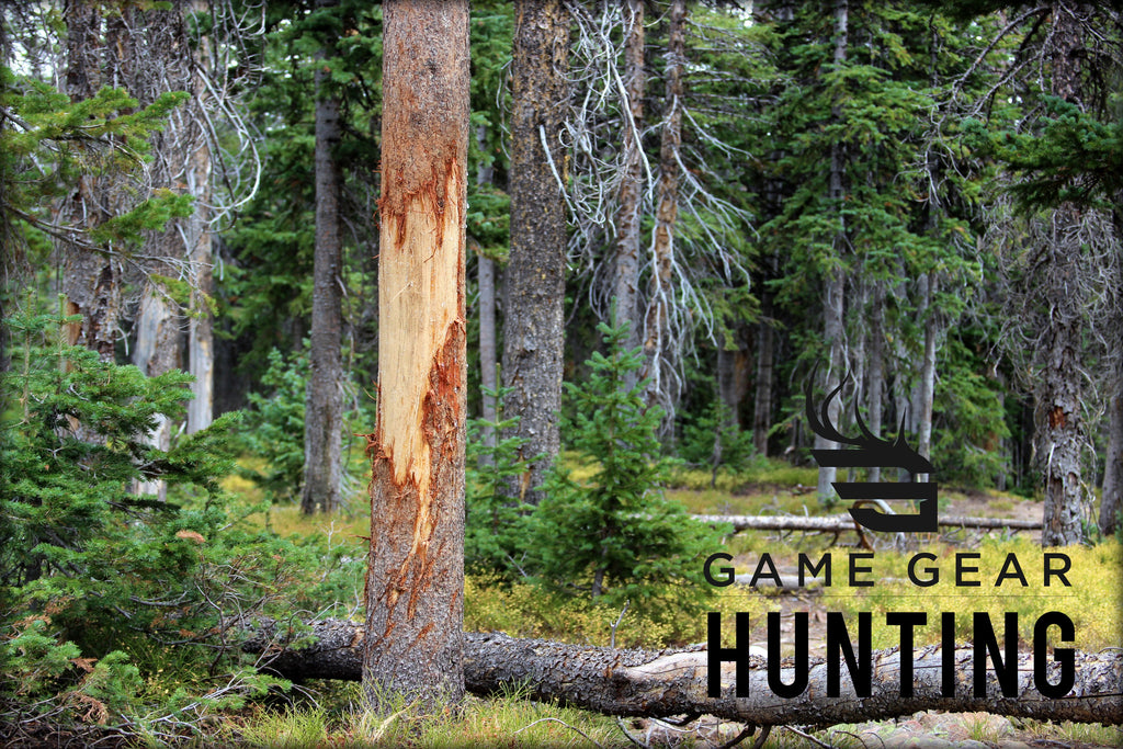 Big Game Hunting and Hunting Gear