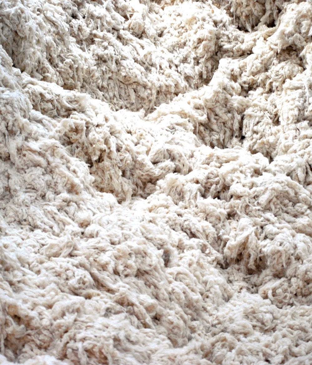Terra Thread works directly with organic cotton farmers' cooperatives.