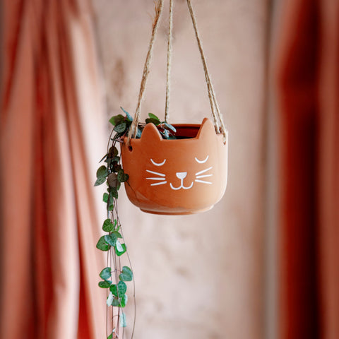 CATS WHISKERS TERRACOTTA HANGING PLANTER