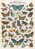 Vintage Chart Style Butterfly Print Poster