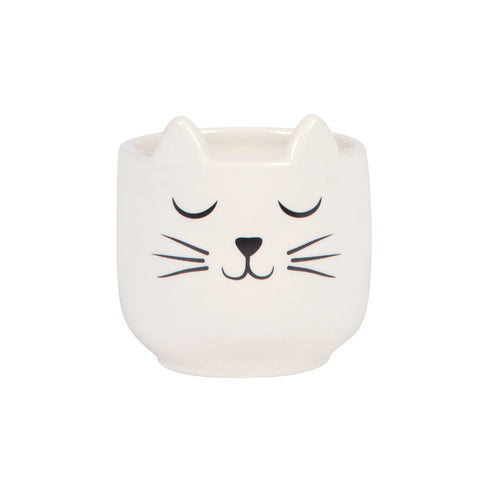 MINI CATS WHISKERS PLANTER
