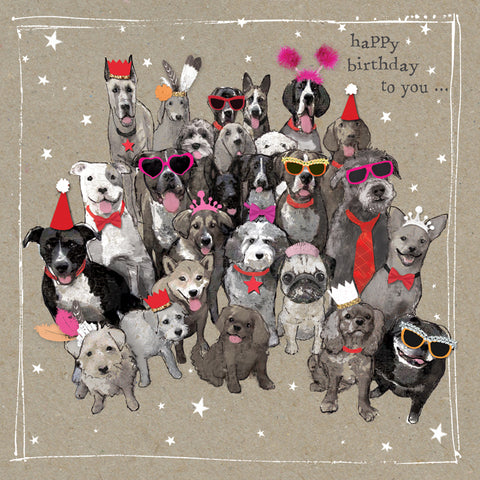 Happy Birthday Dogs Birthday Card