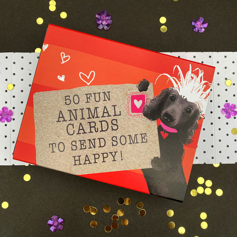 BOX OF 50 FUN ANIMAL CARDS