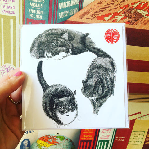 Cat Studies Square Card Blank