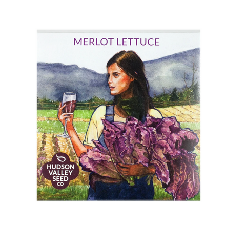 Hudson Valley Seed Co Merlot Lettuce